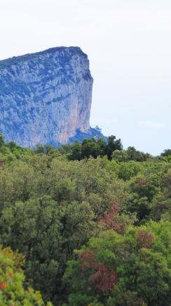 La belle falaise de l'Hortus