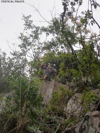 "Une escalade très ""jungle"""