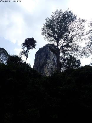 Le Batu Punggul, depuis la rivière