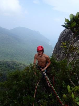 Au sommet, dans la jungle