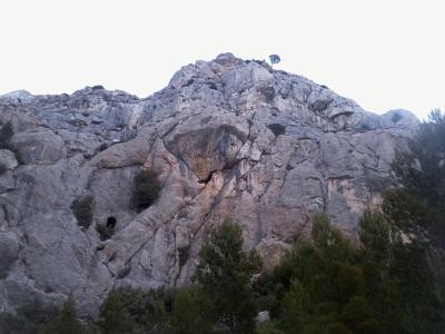 La paroi - la voie rentre dans la première grotte (à côté d'un arbre) pour ressortir par celle sous le toit.