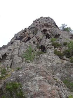 Punta Caletta